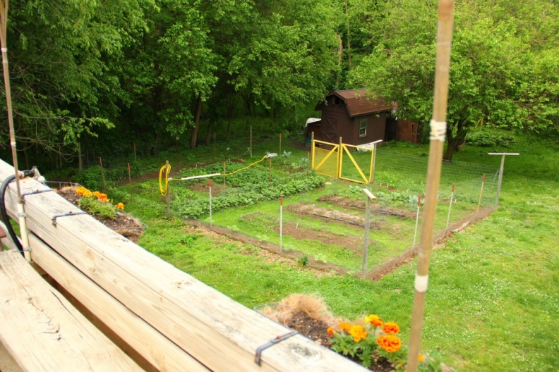 Vegetable Garden in Springtime