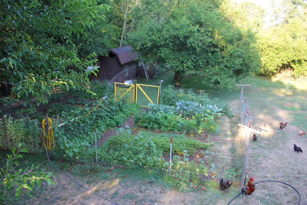 Vegetable Garden and Watering System
