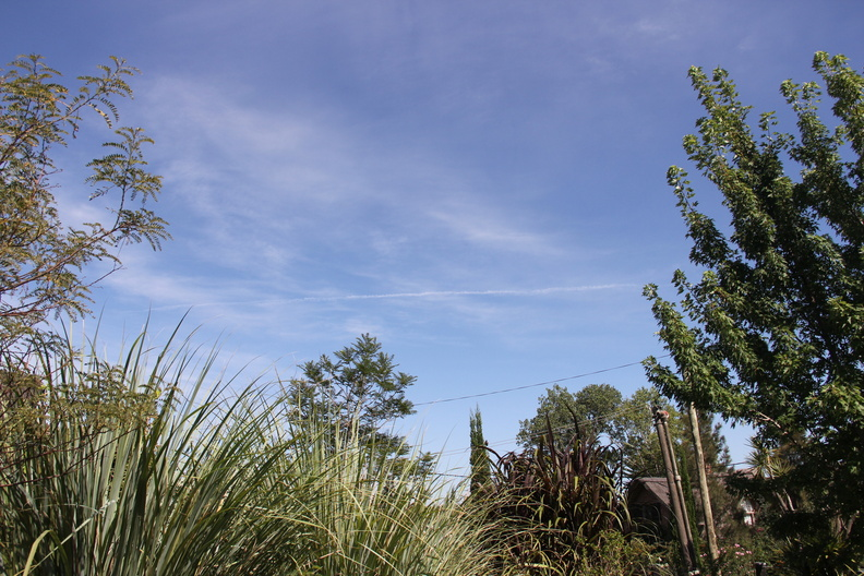 long chemtrail in Uruguay two 1-25-2015.JPG