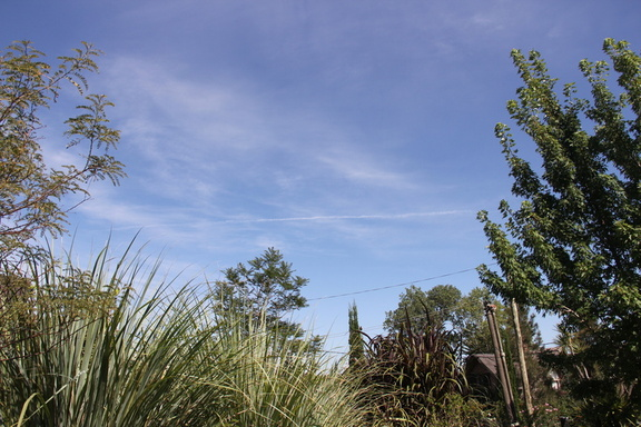 long chemtrail in Uruguay two 1-25-2015