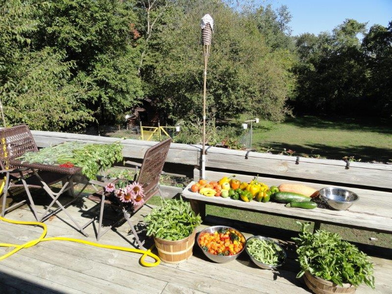 Autumn-Harvest-2011.jpg