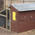 Chicken-Coop-Finished