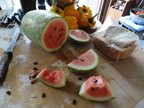 Organic-Watermellon-Patch-2011-SugarBaby