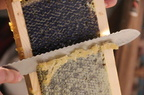 Decapping-Honey-Frames