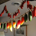 Drying-Hot-Peppers