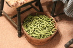 Orgqanic-Green-Bean-Harvest