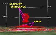 HAARP Bird Kill in Arkansas on Radar