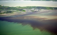 Gulf Oil Spill Planned Catastrophe