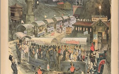 Are You Smarter Than An Orangutan?